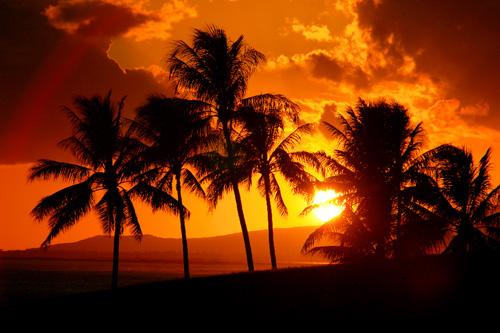 Benefits of legalizing gambling in hawaii