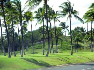 west Oahu 002-B