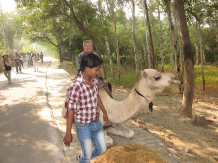 Agra Fort camel ride 014-A