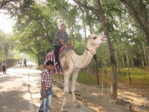 Agra Fort camel ride 016-A
