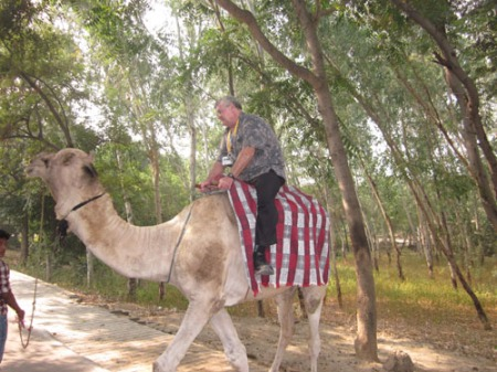 Agra Fort camel ride 017-A