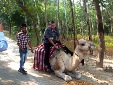 India-camel ride (al rho)-a