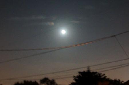 Moon 001-A