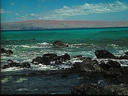 mums, hawaii scenes 003-A