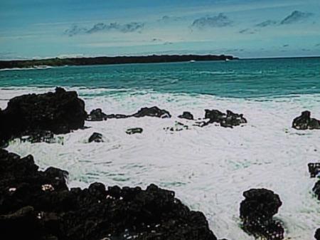 mums, hawaii scenes 005-A
