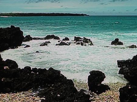mums, hawaii scenes 006-A