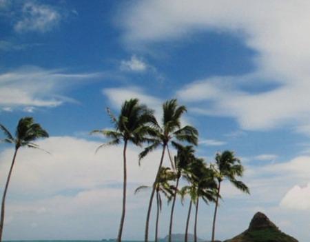 Scenic Hawaii 023-A
