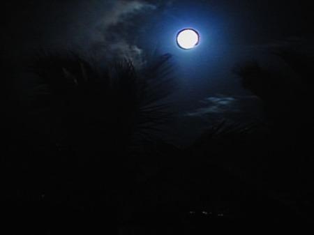 scenic hawaii 003-A