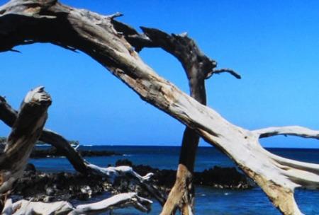 scenic Hawaii 017-A