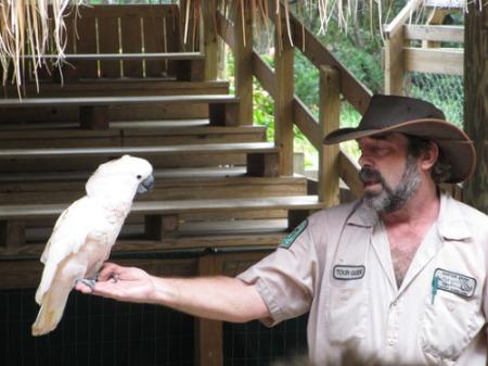 Everglades 106-A