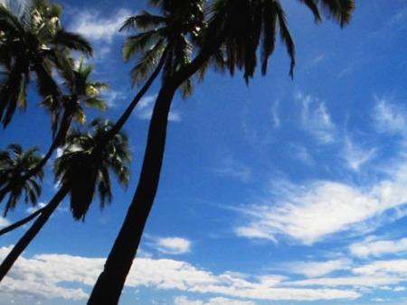 Hawaii 014-A