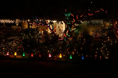 Christmas Lights 115-A