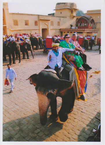 elephant ride-A