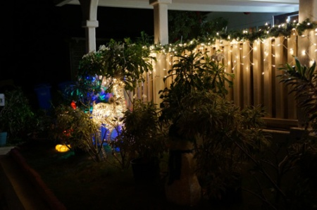 New Years 2015 001-A