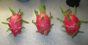 Dragon fruit 003-A