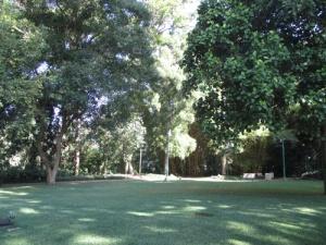 Wahiawa Botanical Garden 003-A