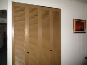 Painted closet doors 021-A