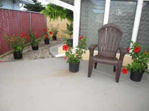 patio-flowers-003-a