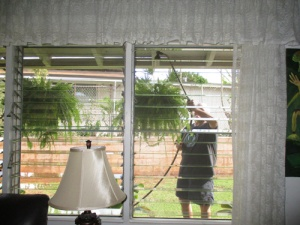 david-washes-windows-010-a