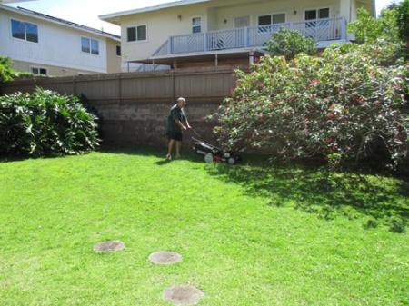 Lawn mower 007-A